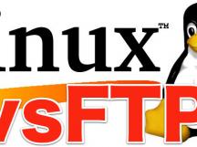 Debian下安装FTP服务vsftpd