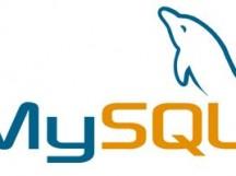Linux Mysql 设置路径